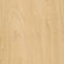 American Maple Texture